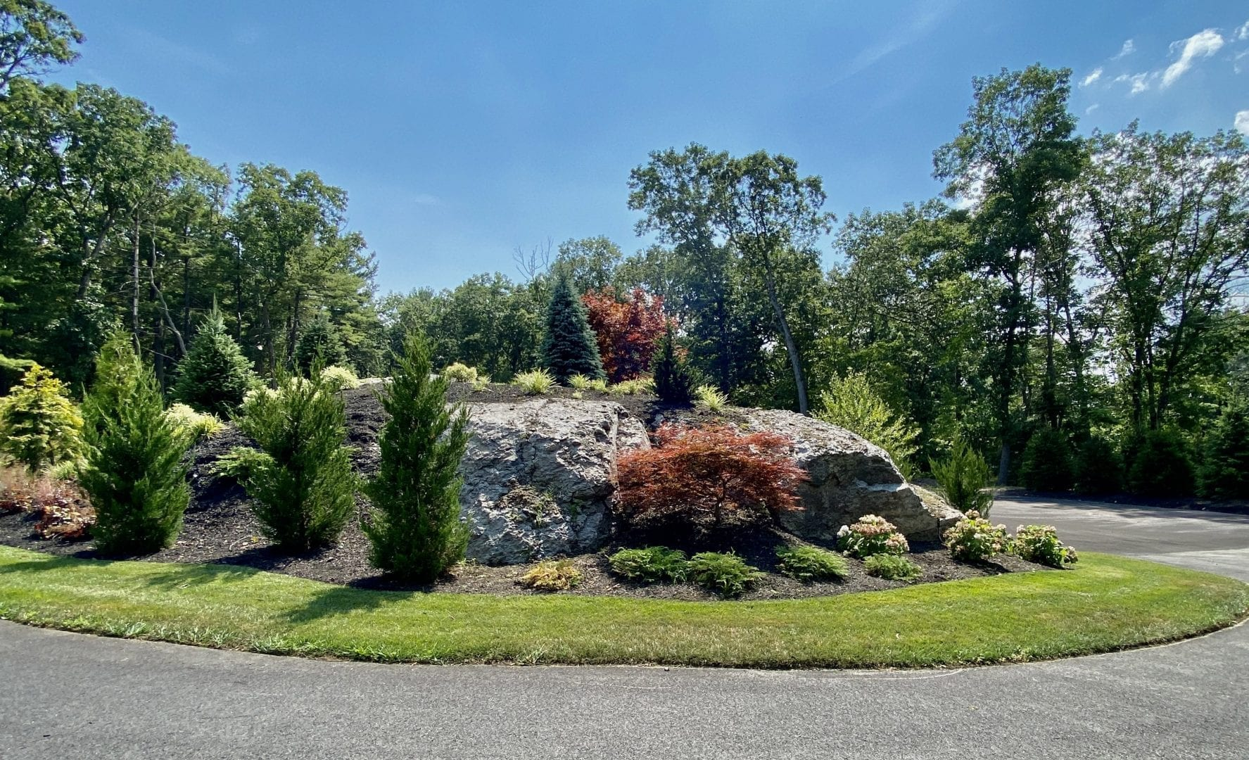 A picture of a recently landscaped cul de sac, with trees and shrubs on top of it.