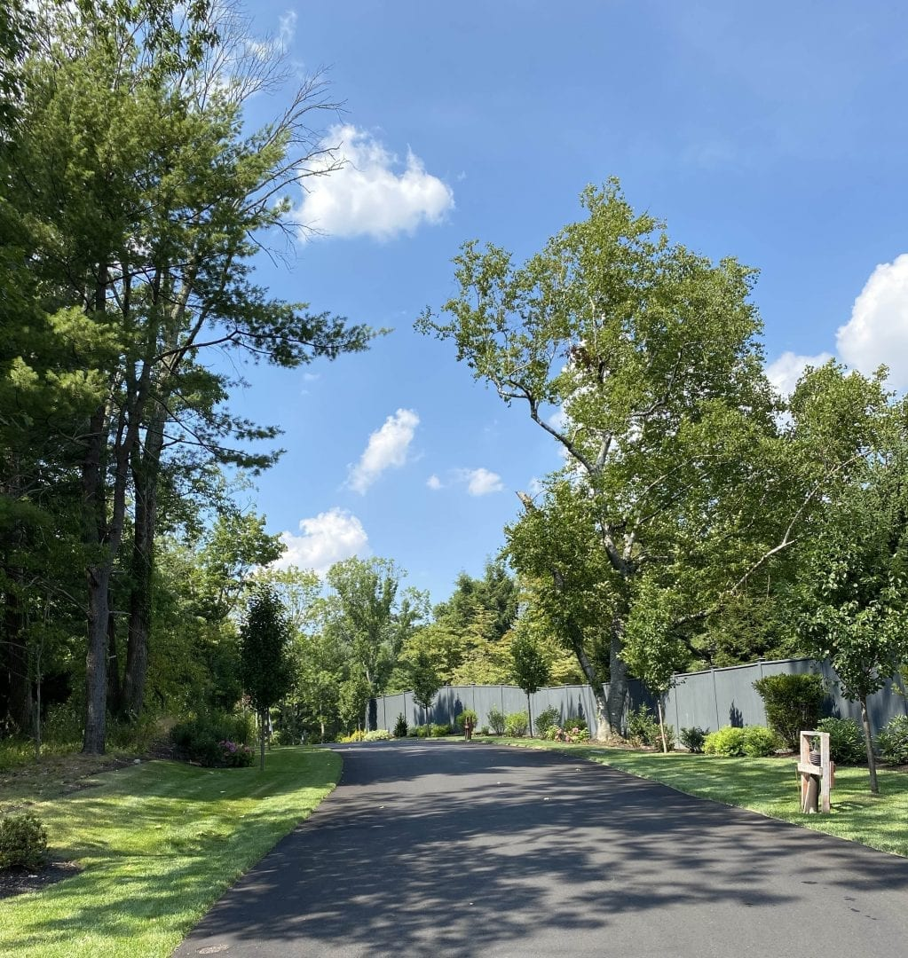A residential road that we recently landscape designed with green grass, trees and shrubs along the sides.
