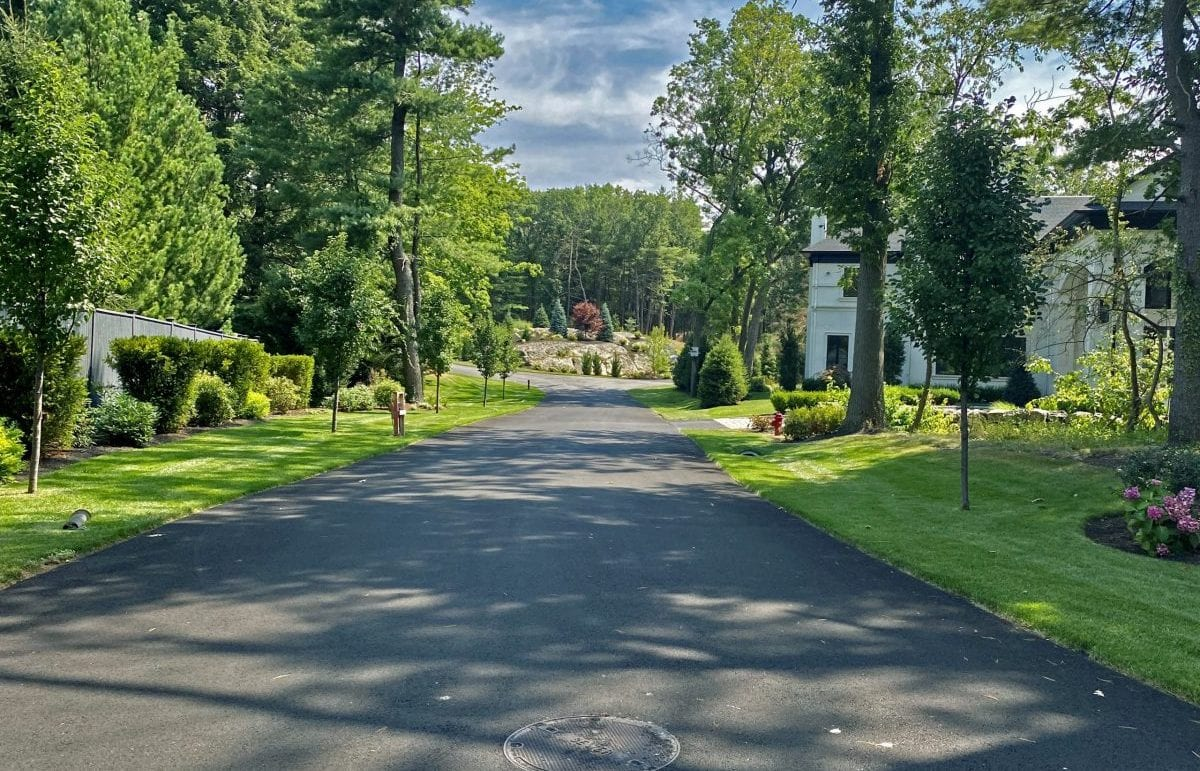 A recently landscaped residential road with green grass, trees and shrubs along the side.