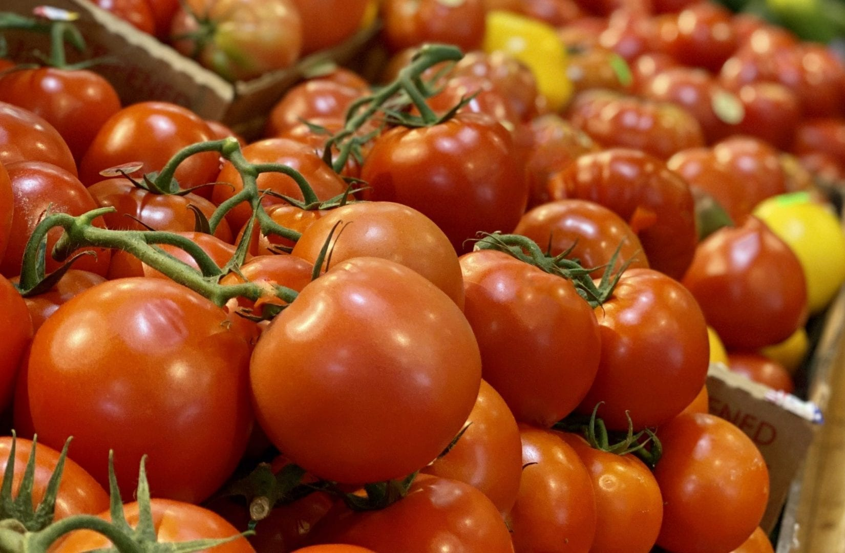 This picture shows red cluster tomatoes in our farm stand.